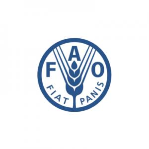 http://FAO%20HEADQUARTERS